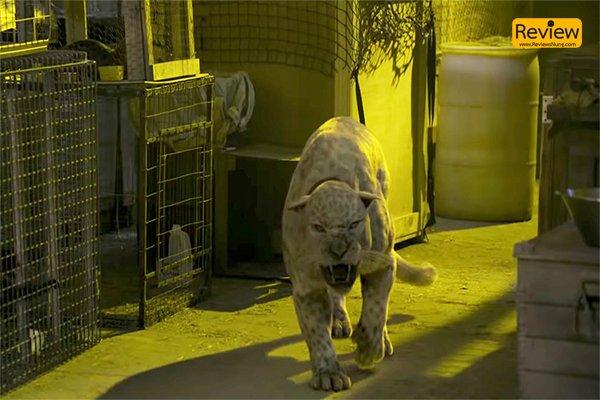 รีวิว : Primal โคตรคนมหากาฬ พรานป่าสุดเท่ คิวบู๊จัดเต็ม รีวิวหนัง Primal